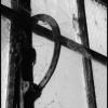window-1-jpg